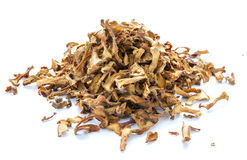 Dried chanterelle mushrooms Stock Images