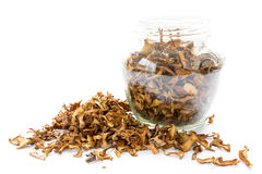 Dried chanterelle mushrooms in a jar Royalty Free Stock Photo