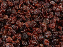 Dried cherries. Coated in sunflower oil to preserve softness Stock Images