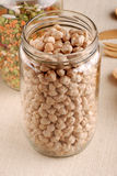 Dried chickpeas Stock Image