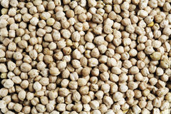 Dried chickpeas as background Royalty Free Stock Photography