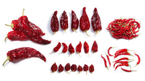 Dried chile peppers. Hot wax, Anaheim,Habanero, Bhut Jolokia, De Arbol. Clipping paths, shadows separated, top view Royalty Free Stock Photos