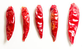 Dried chili Stock Image