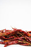 Dried chili background Royalty Free Stock Photography
