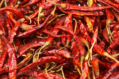 Dried chili background Stock Photos