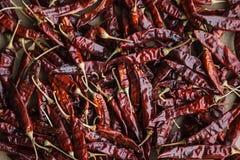 9Dried chili gorący pieprze na rzemiośle tapetują tło Obrazy Stock