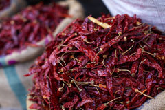 Dried chili pepper in the sack Royalty Free Stock Photography