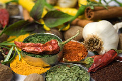 Dried chili pepper and the spices Stock Image