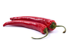 Dried chili pepper Royalty Free Stock Photo