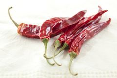 Dried Chili Peppers Royalty Free Stock Photos