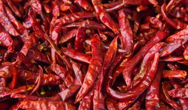 Dried Chili Peppers Background. Many Red Hot Pigments Chile Wallpaper, The Combined Or Pile. Thai Food Seasoning. Close Up And Mac Stock Photos