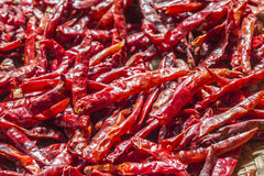 Dried chili. Dried peppers in basket stack Royalty Free Stock Images