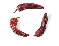 Dried Chili Peppers circle Stock Photos