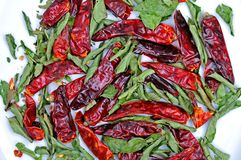 Dried chili peppers and curry leaves Royalty Free Stock Photography