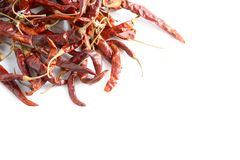 Dried chili peppers. Dried chili peppers on white background Stock Images