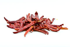 Dried chili. Stock Images