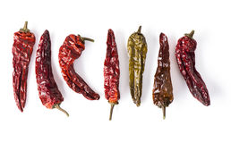 Dried Chili Peppers Lineup Stock Image