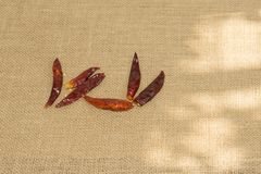 Dried chili peppers. On a rustic background Stock Image