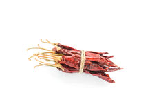 Dried chili peppers on white background Stock Images