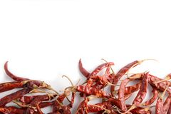 Dried chili peppers . Dried chili peppers on white background Royalty Free Stock Photos