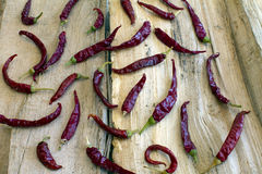 Dried Chili Peppers Royalty Free Stock Image