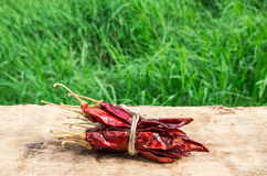 Dried chili peppers on wooden with green grass background Royalty Free Stock Image