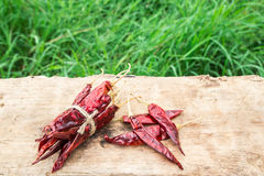 Dried chili peppers on wooden with green grass background Royalty Free Stock Photos