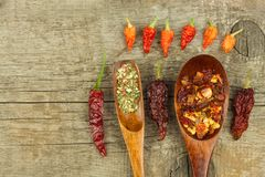 Dried chili peppers on a wooden spoon. Sale of spices. Advertising for sale. Different kinds of hot peppers. Royalty Free Stock Images