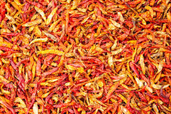 Dried Chili Stock Photos