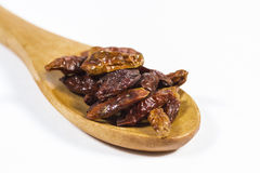 Dried chili in a spoon Stock Photography