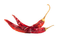Dried chili Royalty Free Stock Photography