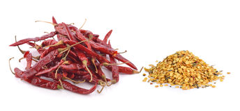 Dried chili on white background Royalty Free Stock Image
