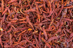 Dried chilies Royalty Free Stock Photos