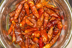 Dried chilies Royalty Free Stock Image