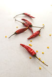 Dried chilies. Red dried chilies on the white floor Stock Images