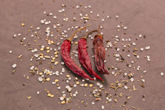 Dried chilies and spices Royalty Free Stock Images