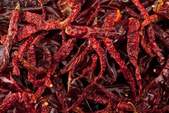 Dried Chilli Stock Photo
