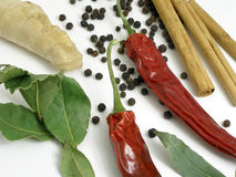 Dried chilli, bay leaves and cinnamon. Dried bay leaves, cinnamon, ddried chilli displayed on a white surface stock photography