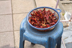 Dried chilli on chair. Dried chilli on blue chair Royalty Free Stock Images