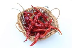 Dried chilli. Dried chill on white background Stock Image