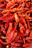 Dried chilli Stock Image