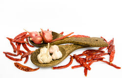 Dried chilli, onion and garlic. In ladle on white background Royalty Free Stock Images