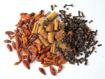 Dried chilli pepper, cinnamon and cloves. On white background Stock Photography