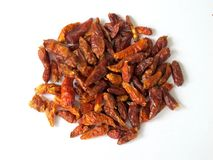 Dried chilli pepper. On white background Royalty Free Stock Photography
