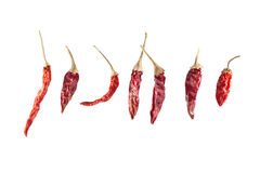 Chilli Peppers. Dried Chilli Peppers Isolated on White Background Royalty Free Stock Photo