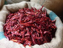 Dried chilli peppers in a Jaipur market. One of the staples of Indian cooking Royalty Free Stock Images