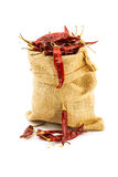 Dried chilli in a ramie sac Royalty Free Stock Photography