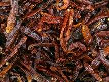 Dried Chilli Royalty Free Stock Photography