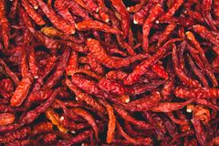 Dried chilli Red chilli spices garnish hot spicy Royalty Free Stock Photos