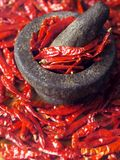 Dried chillies royalty free stock photography